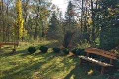 Kecskeméti Arborétum ősszel