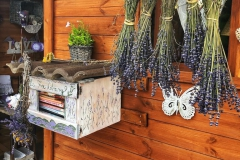 Pannonhalma Provence Levendula