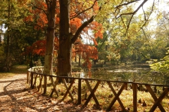Vácrátót Arborétum