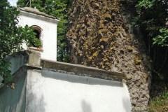 Erdei templom