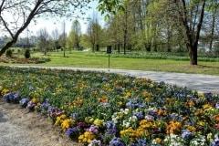 Volčji Potok Arborétum