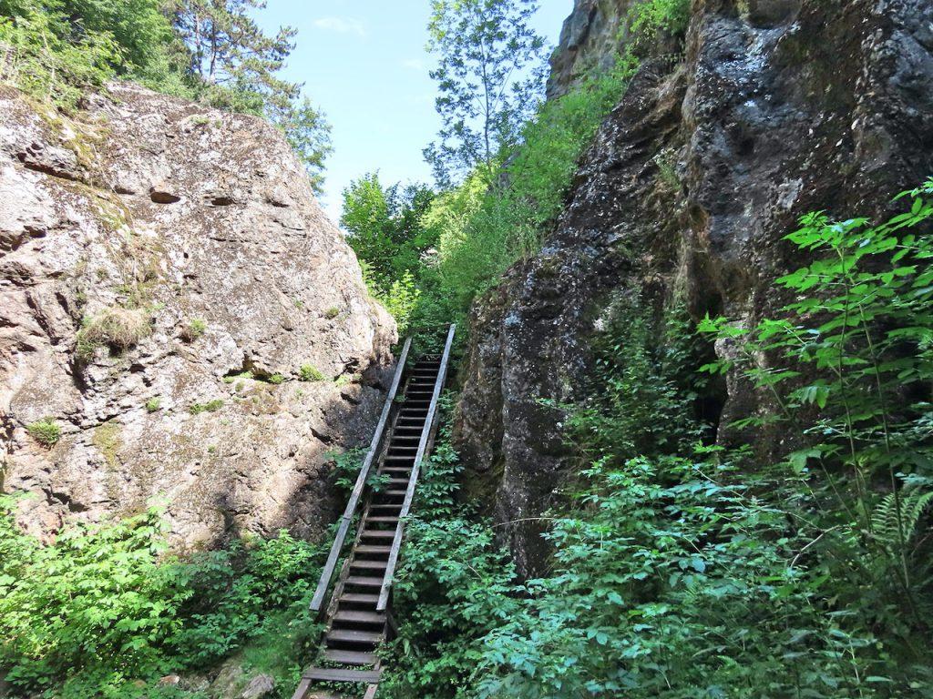 Úrkúti őskarszt - geológiai csoda a Bakonyban