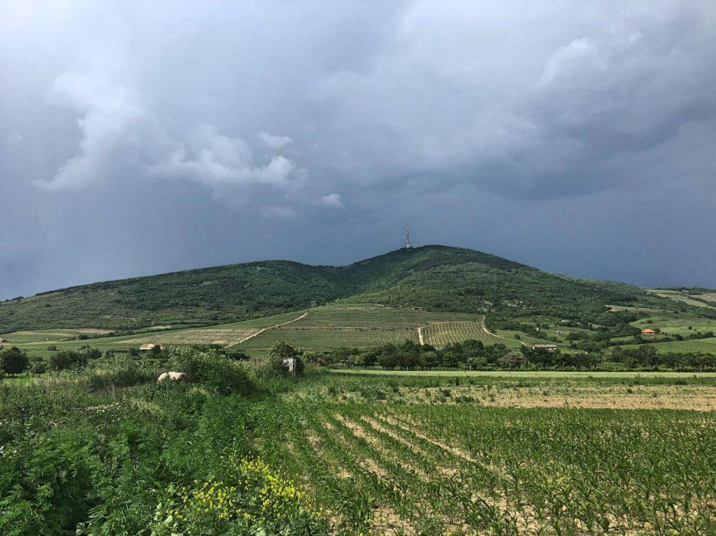 Tokaj és környéke látnivalók: Programok, túra és gasztorélmények