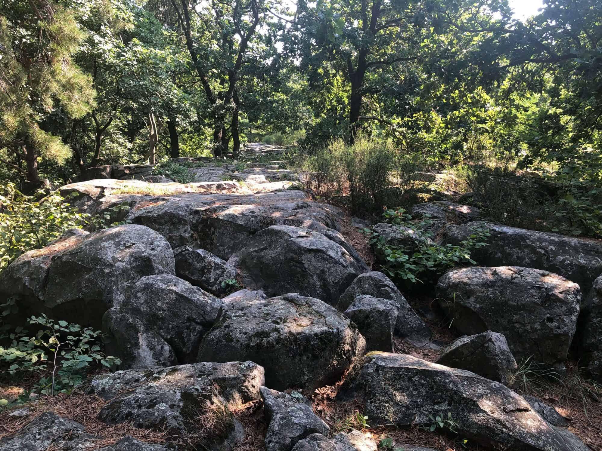 Papsapka-kövek - kőtenger a Csobánc lábánál