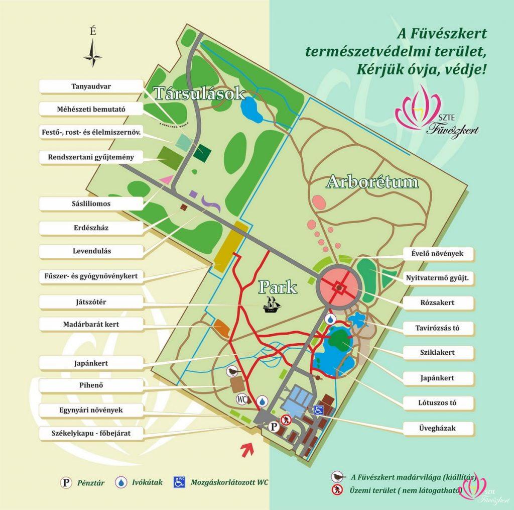 Megújult a Szegedi Tudományegyetem Füvészkertje – újra várja a látogatókat