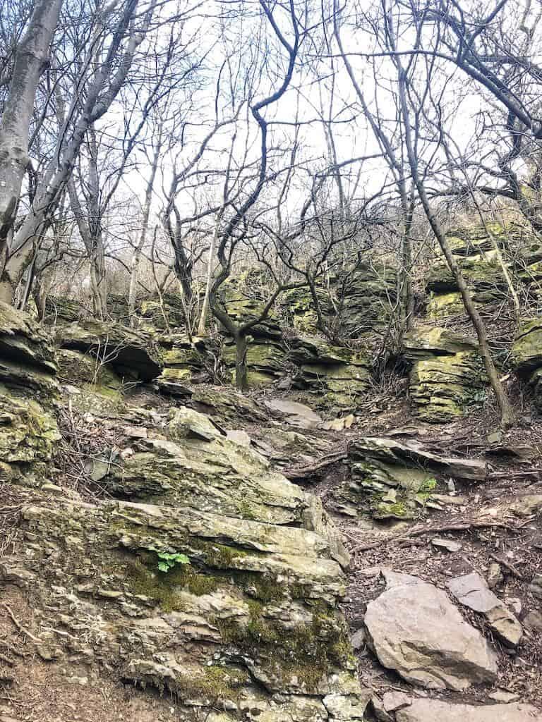 Szent György-hegyi bazaltorgonák tanösvény