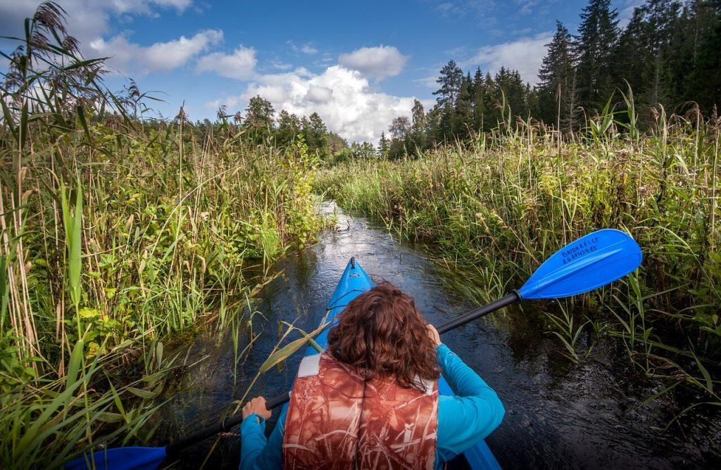 Izgalmas nyári programokat kínálnak a Nemzeti Parkok