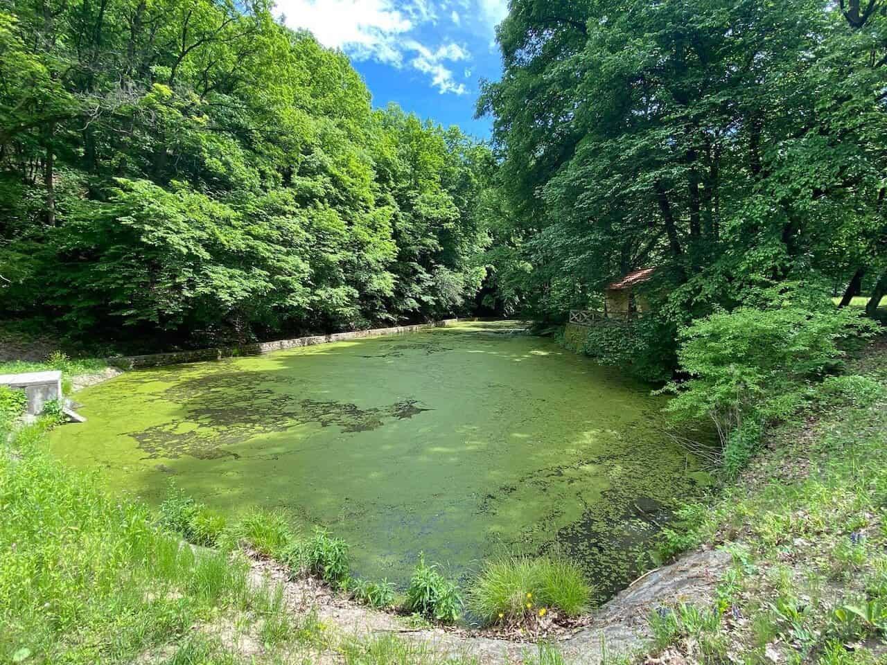 A Miklós-deák-völgyi tavak környéke igazi csodahely!
